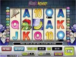 Play Magic Monkey Slots now!